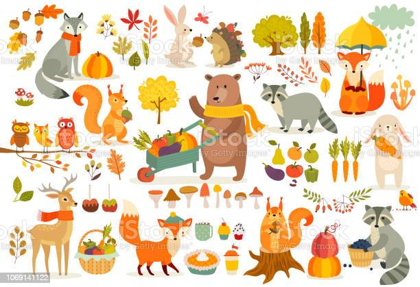 Fall theme set forest animals hand drawn style vector id1069141122?b=1&k=6&m=1069141122&s=612x612&h=ocimzt4vopw1miix7qwqx84falwstmyf7dm2fquzgdo=