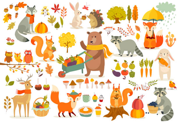 FAll theme set, forest Animals hand drawn style. FAll theme set, forest Animals hand drawn style. Vegetables, trees, leaves, food for harvest festival or Thanksgiving day. Cute autumn charactrs - bear, fox, raccoon, squirel. Vector illustration. woodland stock illustrations