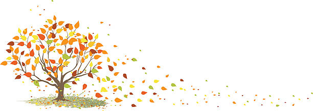 Fall Tree with It's Leaves Blowing in the Wind Simple little tree with it's leaves blowing in the fall wind. Layered. autumn clipart stock illustrations