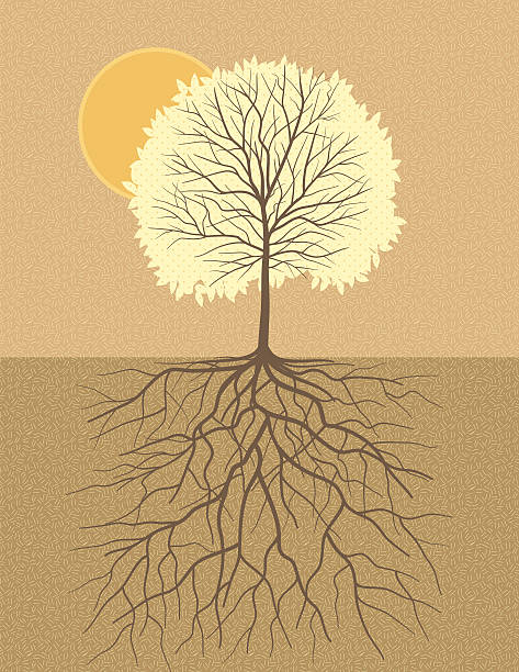 Deep Roots In Native Youth: Royalty Free Deep Roots Clip Art, Vector Images
