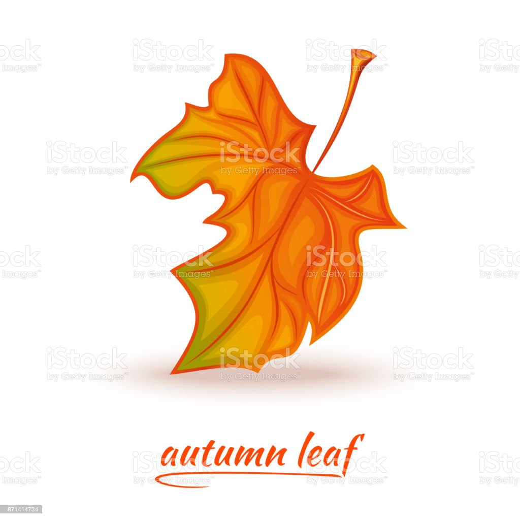Fallen autumn leaf logo design vector art illustration