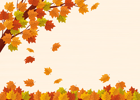 Falling autumn leaves. Vector illustration.