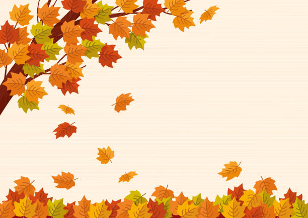 Falling autumn leaves. Vector illustration. Falling autumn leaves. Vector illustration. autumn leaf color stock illustrations