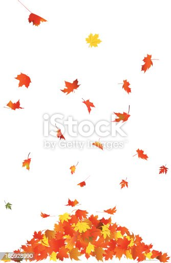 istock Falling Leaves 165928990