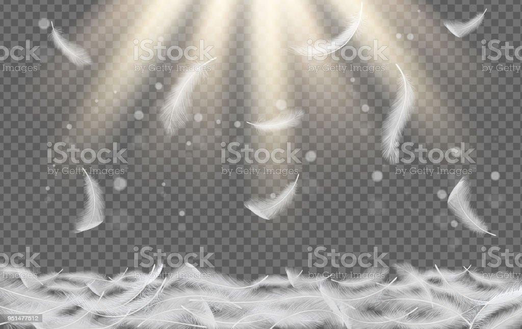 Queda de penas brancas vector ilustração realista - ilustração de arte em vetor