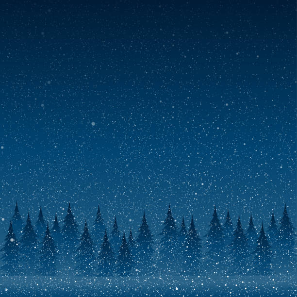 24,331 Blizzard Illustrations, Royalty-Free Vector Graphics & Clip Art -  iStock