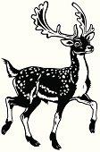 fallow deer black white