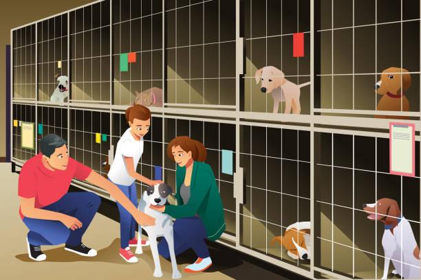 familie annahme einen hund vom tierheim - adoption stock-grafiken, -clipart, -cartoons und -symbole