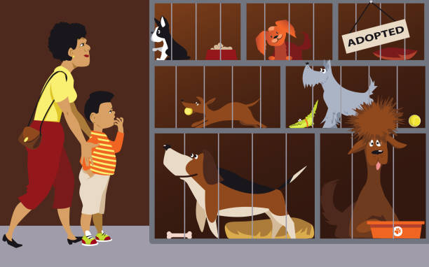 Family adopting a dog Mother bringing her son to an animal shelter to adopt a dog, EPS 8 vector illustration animal shelter stock illustrations