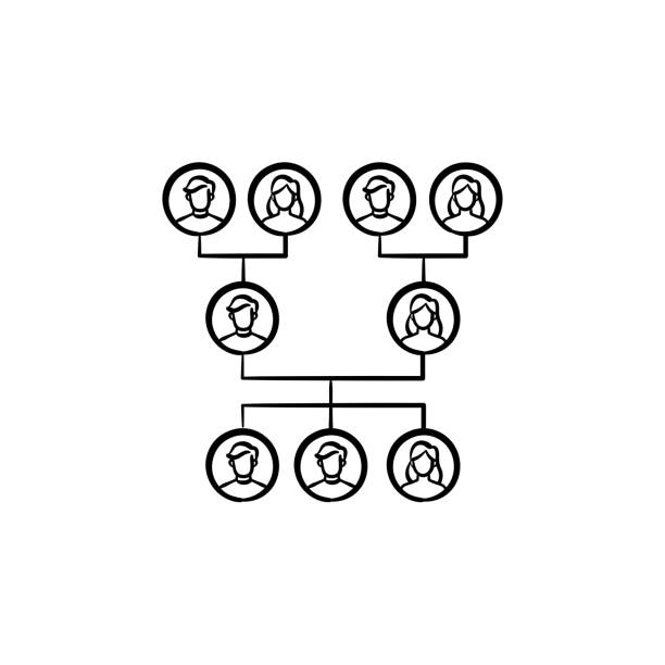 illustrations, cliparts, dessins animés et icônes de icône de croquis dessiné main arbre généalogique de votre famille - arbres généalogiques