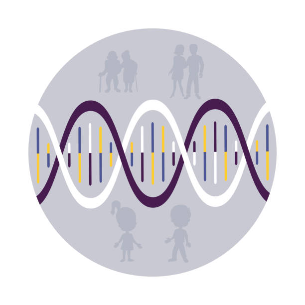 Family history. DNA. vector art illustration