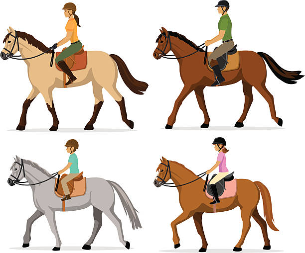 Top 60 Girl Riding Horse Clip Art, Vector Graphics and ...