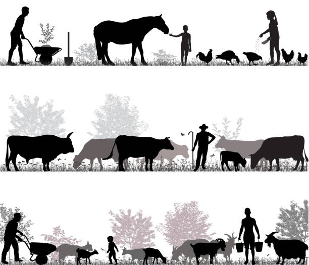 Family of farmers Silhouettes of farmers at work and farm animals farmer stock illustrations