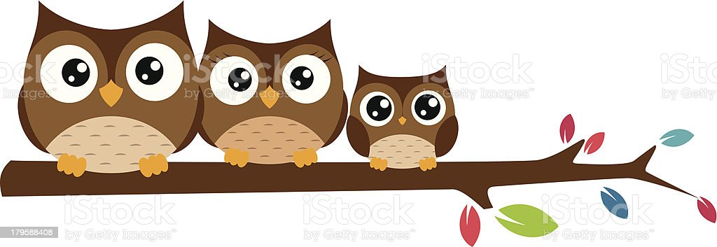 Family of owls sat on a tree branch vector art illustration