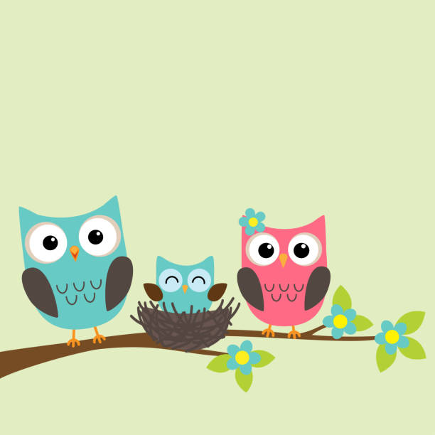 family of owls - sowa stock illustrations