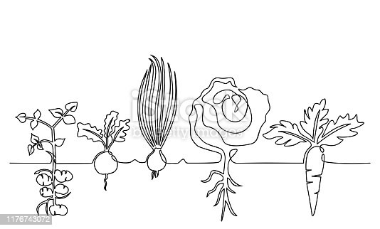 istock Family of vegetables growing in a garden on a garden, hand-drawn in one line 1176743072
