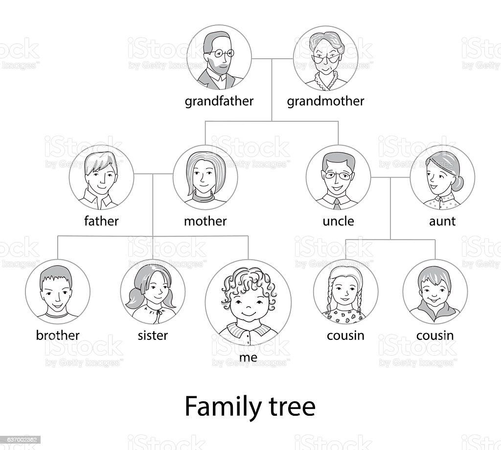 family tree chart thin line style vector いたずら書きのベクター