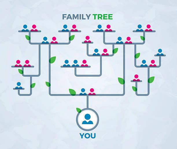 familie baum konzept - stammbäume stock-grafiken, -clipart, -cartoons und -symbole