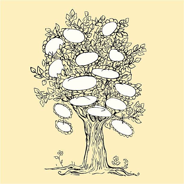 ilustrações de stock, clip art, desenhos animados e ícones de design de árvore genealógica com quadros em branco para texto - lian empty