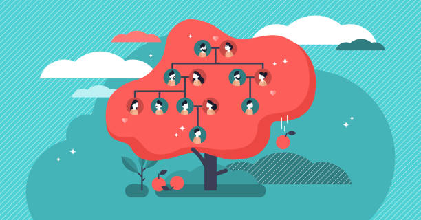 Family tree flat vector illustration. Example of relatives connection data. Family tree flat vector illustration. Example of relatives connection data. Human genealogical heritage collection from one family depicted in scheme in form of apple tree. Old kin tradition symbol. origins stock illustrations