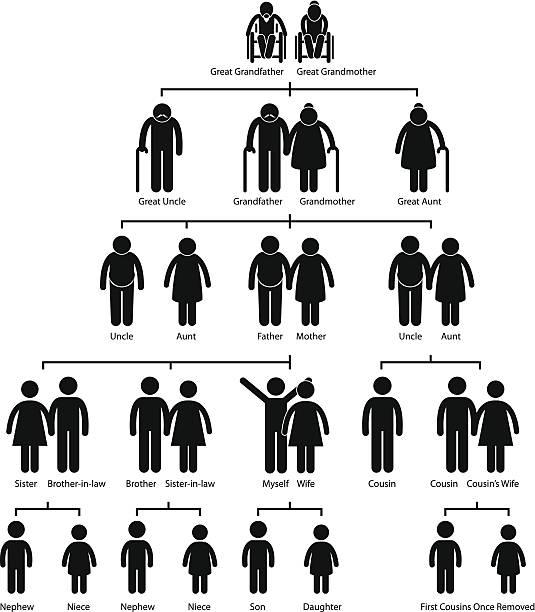 stammbaum mit ahnenforschung diagramm pictogram - stammbäume stock-grafiken, -clipart, -cartoons und -symbole
