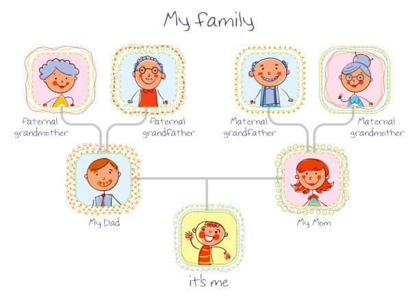 illustrations, cliparts, dessins animés et icônes de arbre généalogique. dans le style des dessins d'enfants - arbres généalogiques