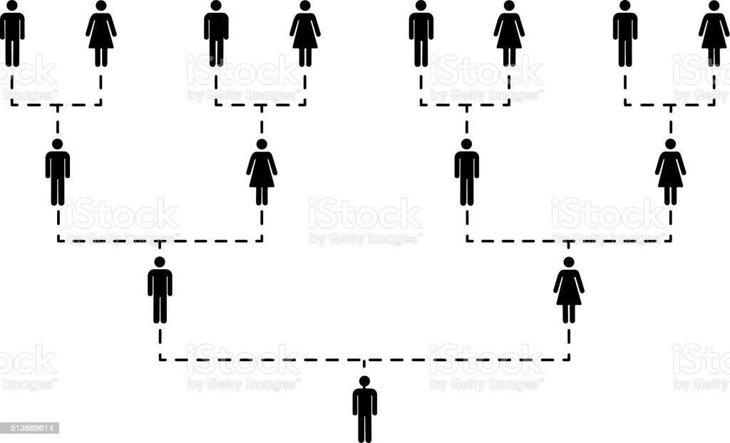 Árbol de la familia de diferentes generaciones sobre blanco - ilustración de arte vectorial