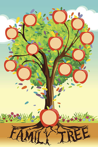 royalty free family tree template clip art vector images