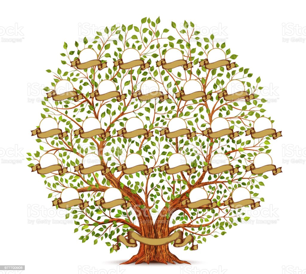 Family Tree Template Vector Illustration Royalty Free Stock Art