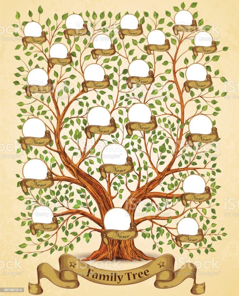 Árbol de la familia plantilla de ilustración de vectores Vintage - ilustración de arte vectorial