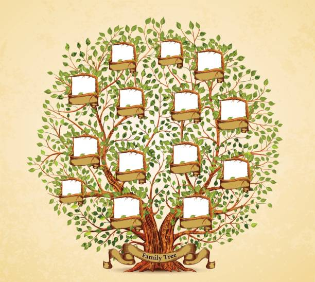 family tree template vintage vector illustration vector art illustration