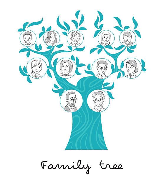 family tree thin line style vector - stammbäume stock-grafiken, -clipart, -cartoons und -symbole