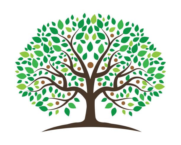 stammbaum vektor icon-design - stammbäume stock-grafiken, -clipart, -cartoons und -symbole