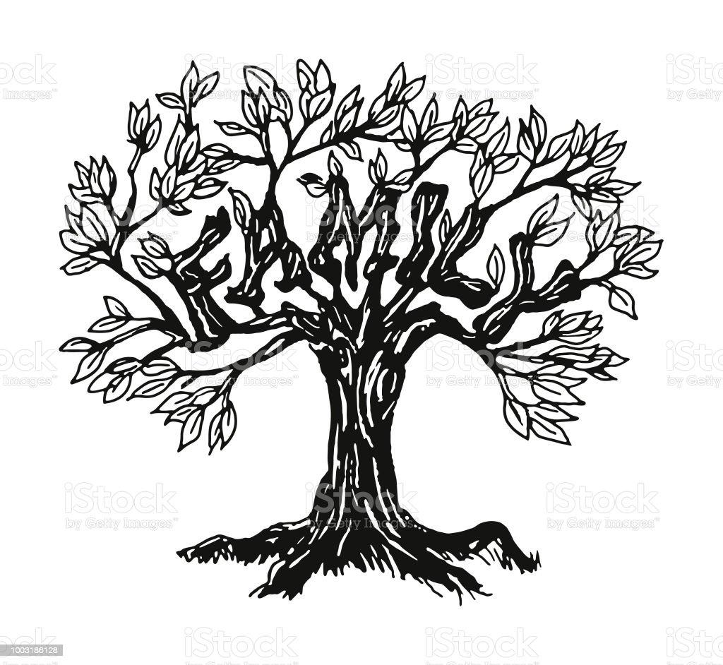 Ilustración De árbol Genealógico Y Más Banco De Imágenes De Aire