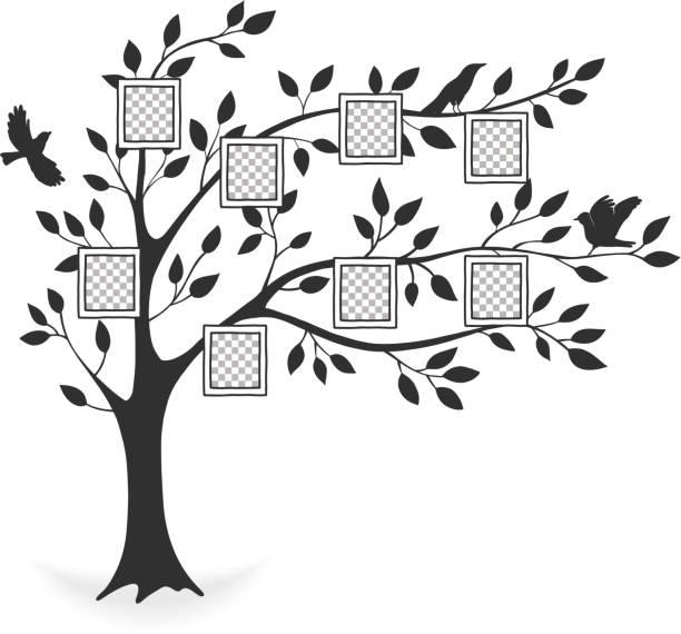 illustrations, cliparts, dessins animés et icônes de arbre généalogique avec cadres photo - arbres généalogiques