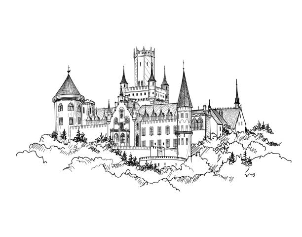 ilustrações de stock, clip art, desenhos animados e ícones de famous german castle landscape. travel germany background. tower building skyline. - castle