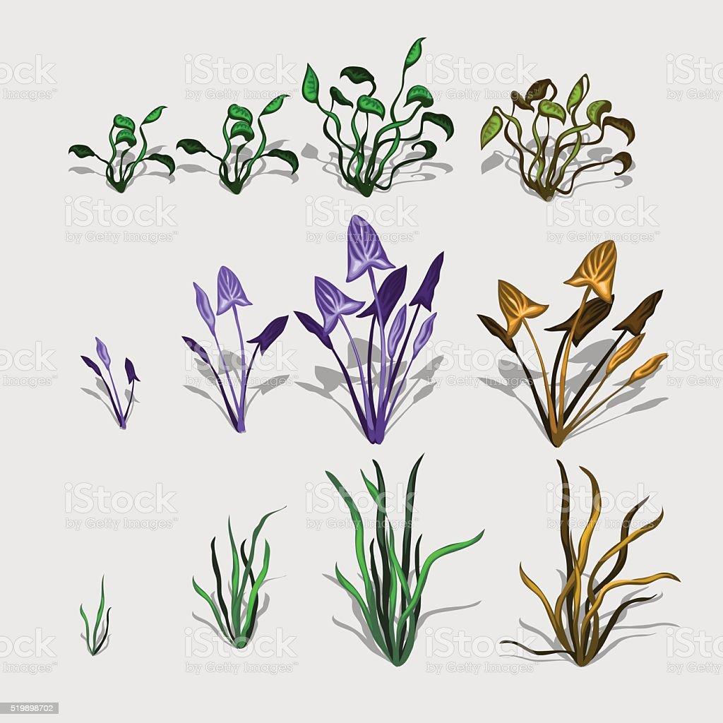 おしゃれな種類の植物や芝生大きなベクトルセット のイラスト素材