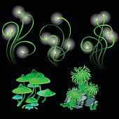 Fantastic glowing mushrooms and polyps