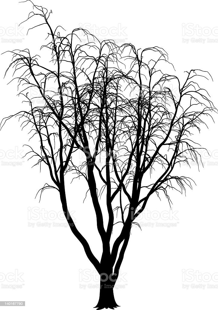 fantastic tree royalty-free fantastic tree stock vector art & more images of bare tree