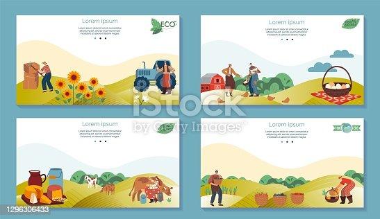 istock Farm agriculture product vector illustrations, cartoon flat farmer people working in farmfield, harvesting vegetables, sunflowers 1296306433