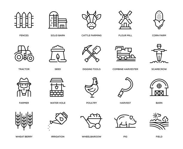 Farm and Agriculture Icon Set Farm and Agriculture Icon Set - Thin Line Series corn crop stock illustrations