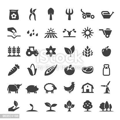 Farm, Agriculture, harvesting, growth