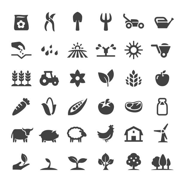 Farm and Agriculture Icons - Big Series Farm, Agriculture, harvesting, growth crop plant stock illustrations