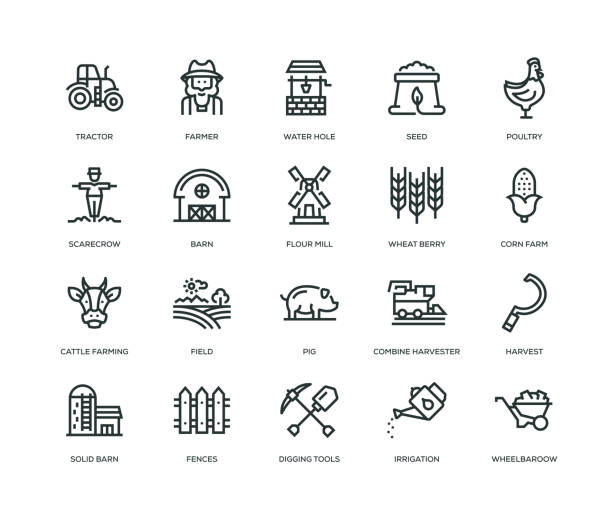stockillustraties, clipart, cartoons en iconen met boerderij en landbouw icons - line serie - wheat field