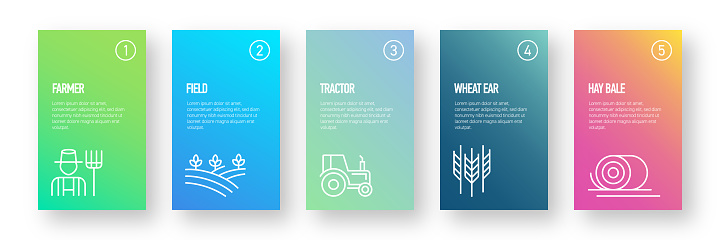 Farm and Agriculture Infographic Design Template with Icons and 5 Options or Steps for Process diagram, Presentations, Workflow Layout, Banner, Flowchart, Infographic.