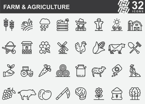 ilustrações de stock, clip art, desenhos animados e ícones de farm and agriculture line icons - inseto himenóptero