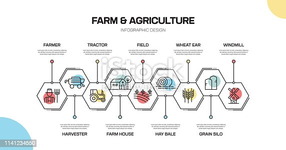 Farm and Agriculture Related Line Infographic Design