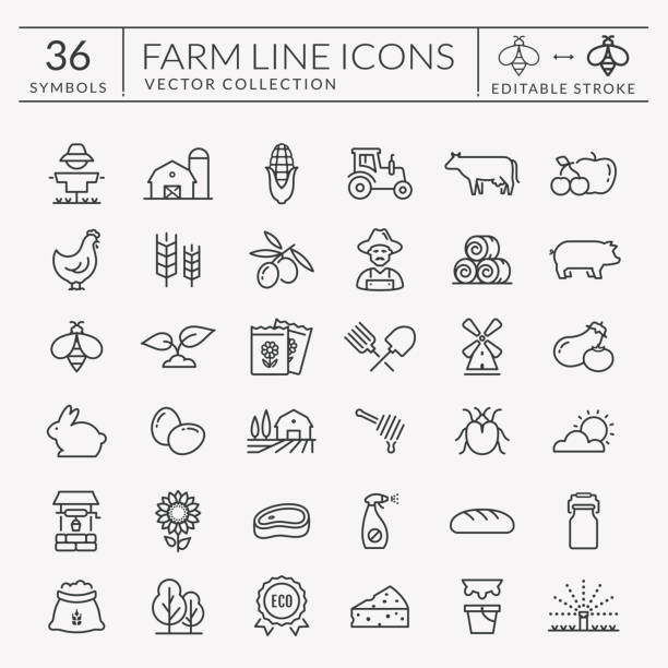 Farm and agriculture vector line icons. Editable stroke. Farming and agriculture line icon set. Vector isolated farm and countryside outline symbols: cereal crop, fruit, vegetables, dairy products, fresh meal, animals, plants, equipment. Editable stroke. poultry stock illustrations