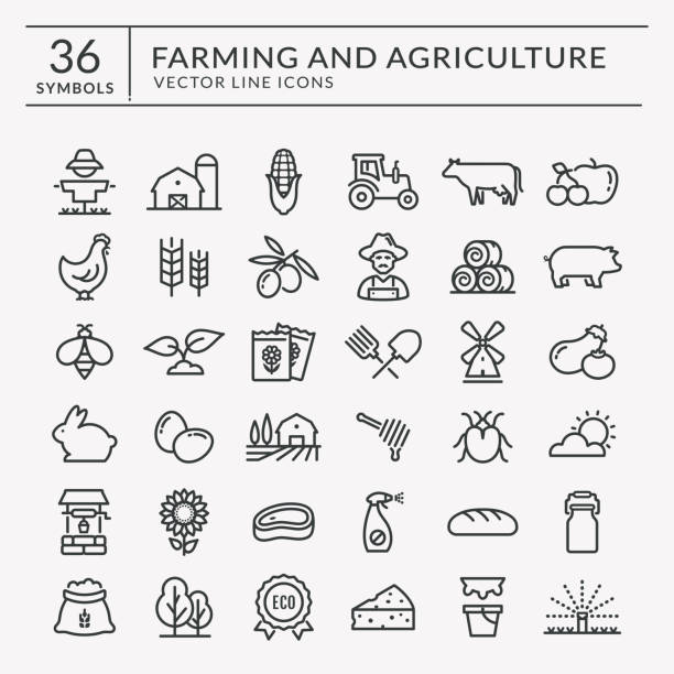 Farm and agriculture vector line icons. Farming and agriculture web line icon set. Vector isolated farm and countryside outline symbols: cereal crop, fruits, vegetables, natural dairy products, fresh meal, animals, plants, tools, equipment. farm animals stock illustrations