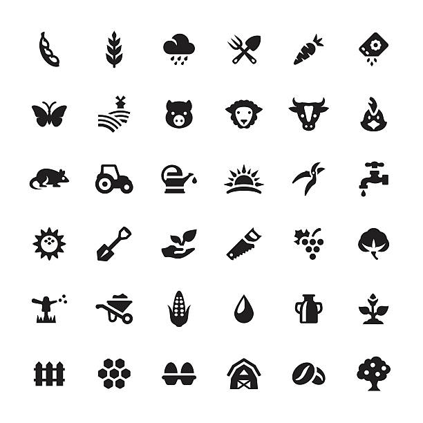 farm and agriculture vector symbols and icons - plant pod stock illustrations